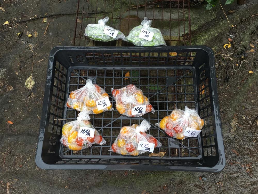 Một quầy hàng bán rau quả tự phục vụ ở giữa khu dân cư đông đúc, gần nhà ga Omiya tại tỉnh Saitama, gần thủ đô Tokyo của Nhật.Hàng sáng, một người nông dân thu hoạch rau quả từ khu nông trại của ông ngay cạnh đó rồi để ra cửa hàng. Đến chiều, ông ra lấy giá hàng và thu tiền về. Hình được chụp tháng 7/2016 - Ảnh: Ngọc Diệp.