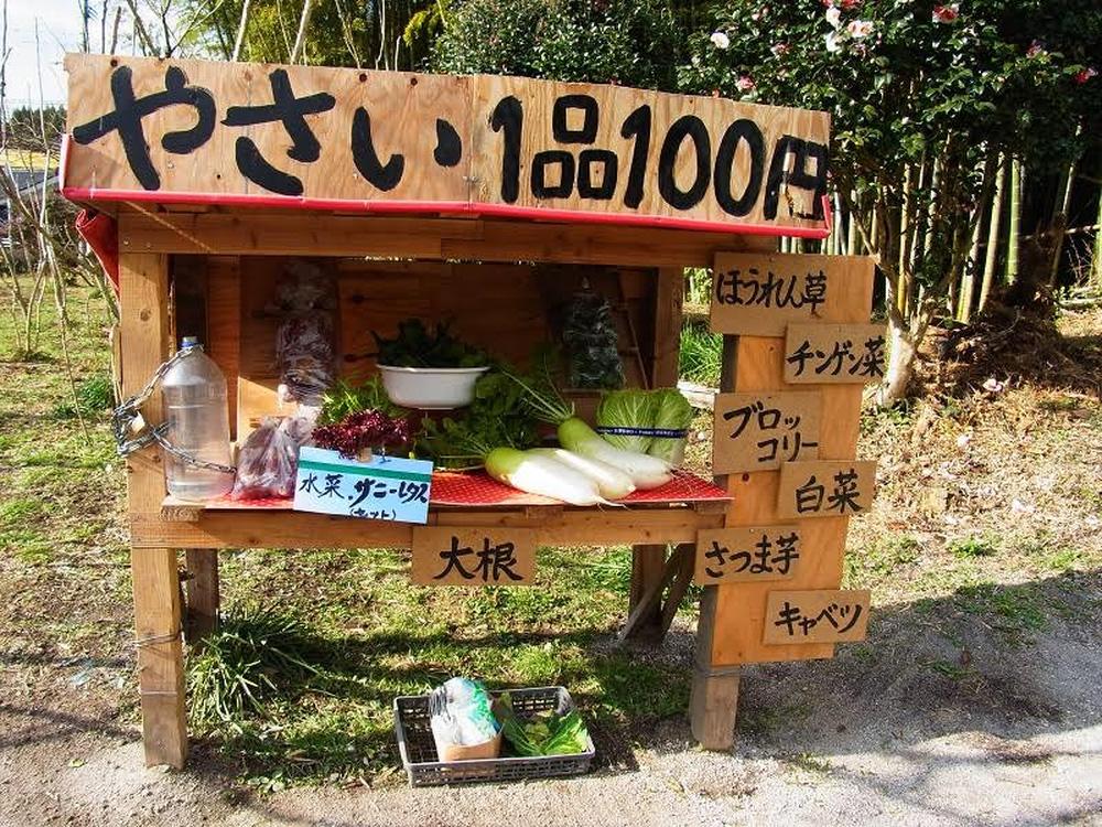 """Tấm hình trong biển ghi dòng chữ: """"Rau giá 100 Yên/cây"""". Đây là cửa hàng của một người nông dân tại tỉnh Kagoshima, thuộc đảo Kyushu miền Nam nước Nhật - Ảnh: AiraKrisma."""