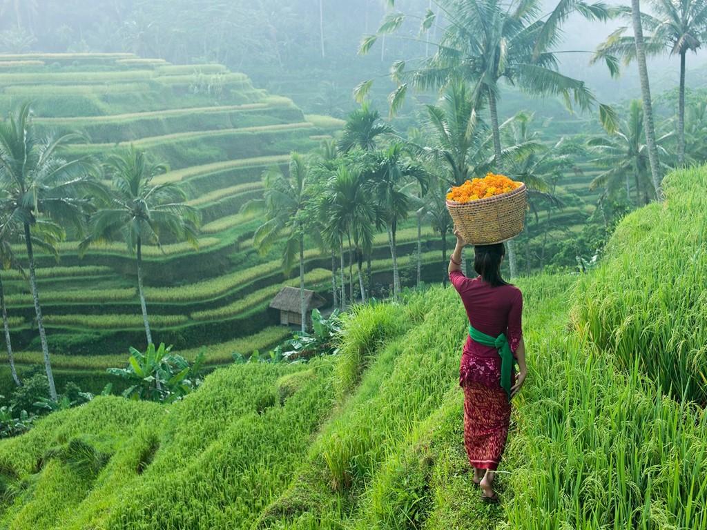 3 thang canh Viet Nam vao top canh dep nhat chau A hinh anh 6