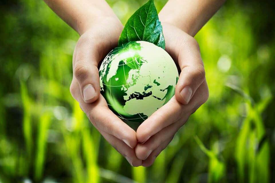 Thay đổi lối sống là cách tốt nhất để bảo vệ môi trường