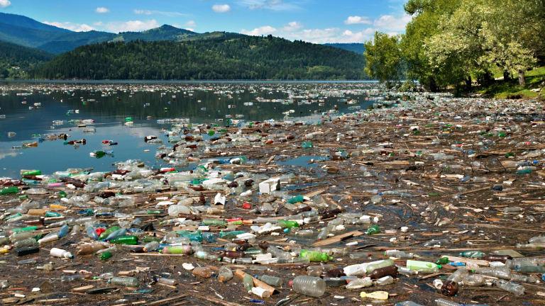 Những biểu hiện của sự suy thoái môi trường sinh thái toàn cầu