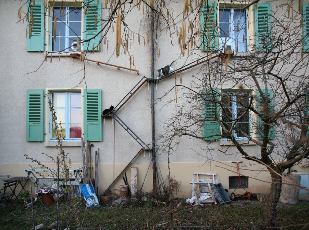 Chùm ảnh: Cầu thang cho mèo – nét kiến trúc đặc thù ở thủ đô Thụy Sĩ