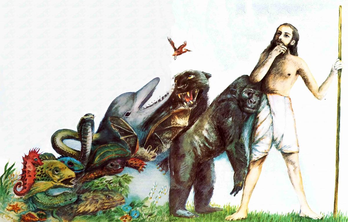 Lịch sử học thuyết tiến hóa: Từ Darwin đến thời hiện đại