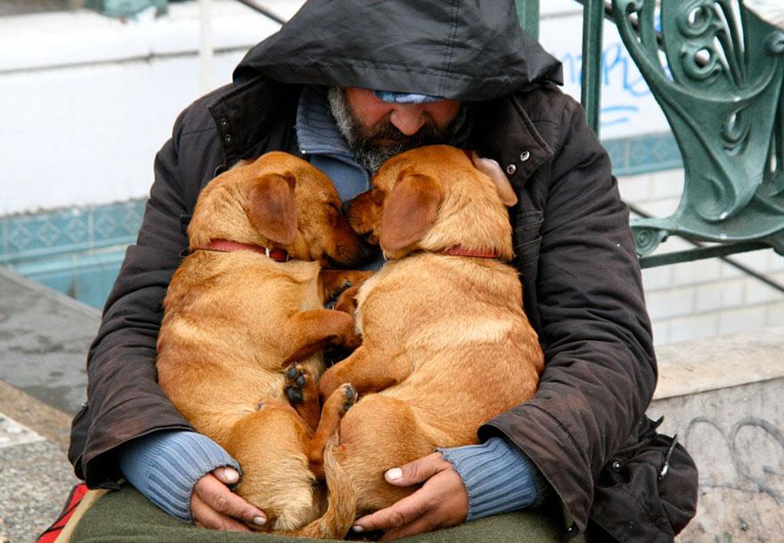 Chùm ảnh: Dù bạn nghèo đến đâu, loài chó cũng không rời bỏ bạn