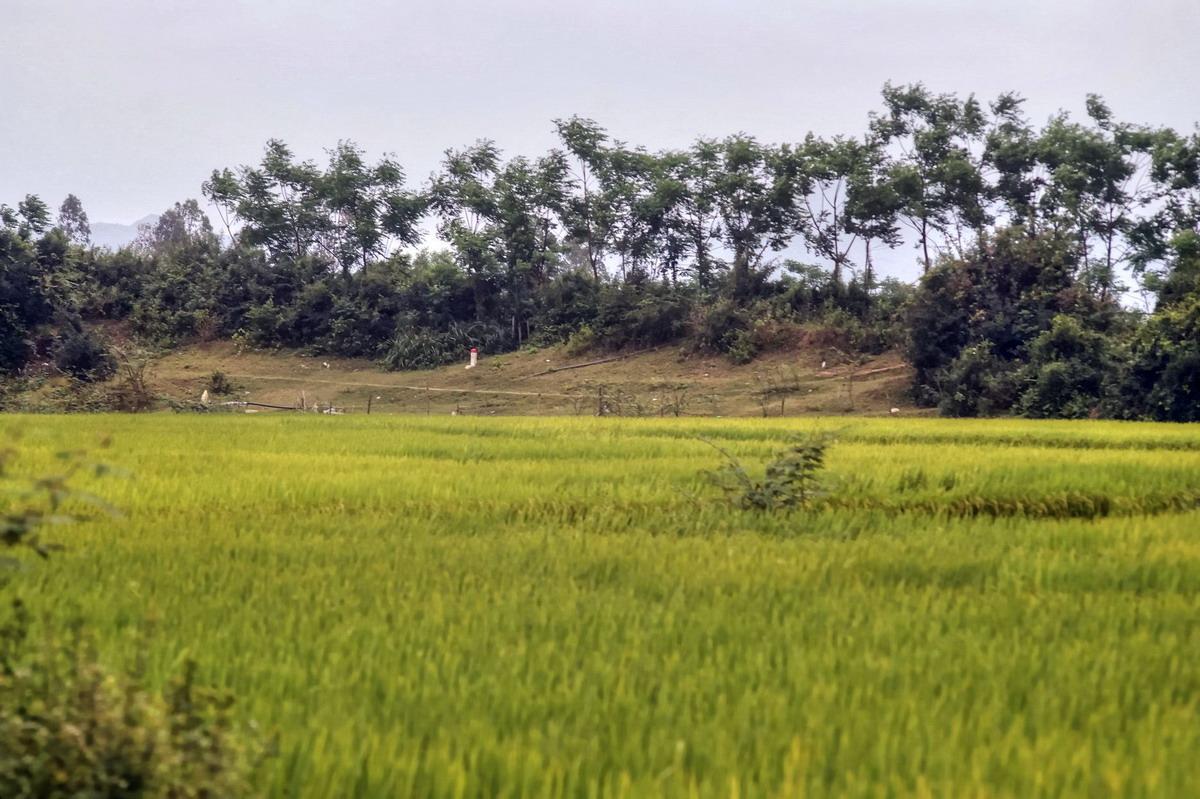 Chùm ảnh: Thành Cha – tòa thành kép độc đáo của vương quốc Champa