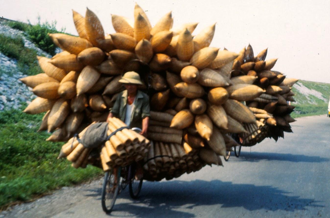 Xe đạp ở Hà Nội năm 1990 qua ống kính người New Zealand