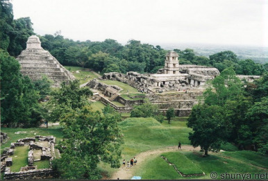 maya palenque
