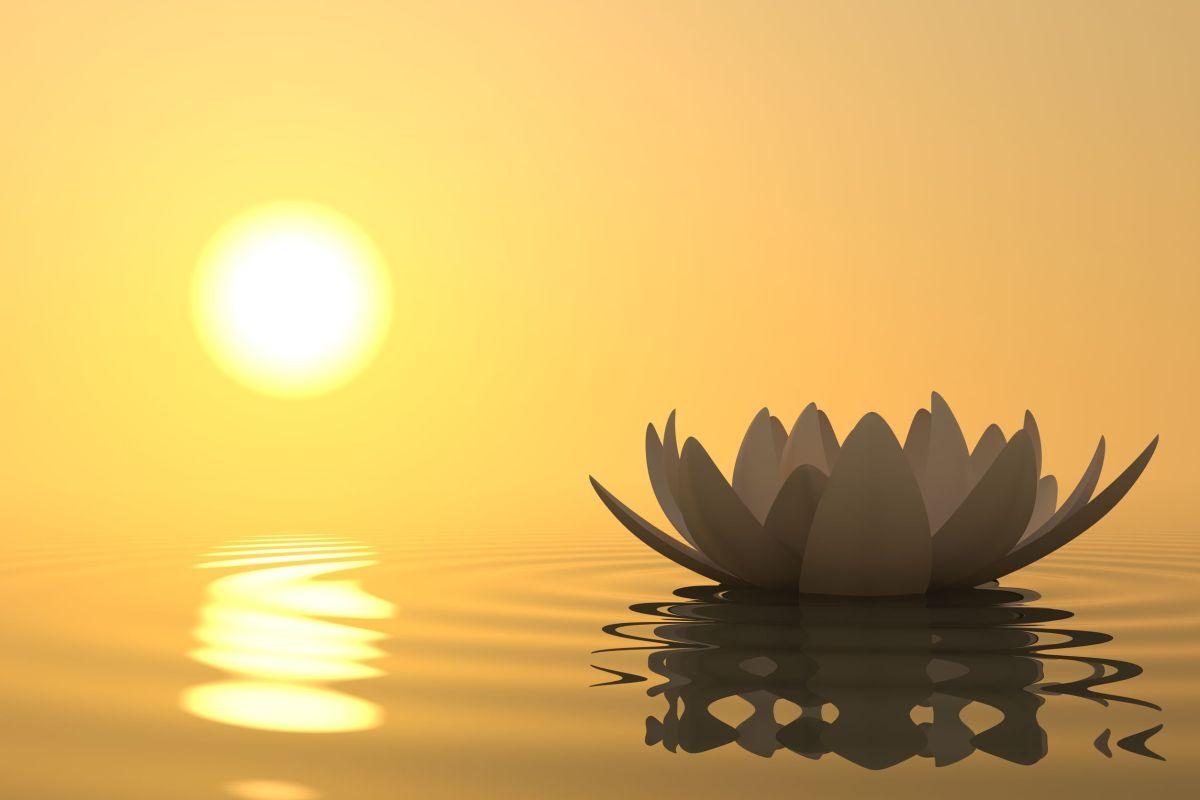 Làm sao để có được sự thanh tịnh tâm hồn?