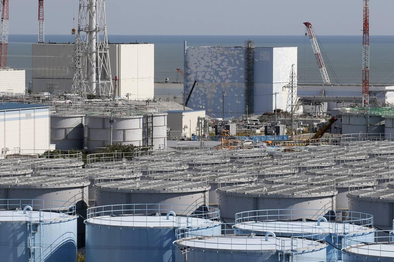 Điện hạt nhân: Một cái nhìn tư chuyên gia đầu ngành của Nhật Bản