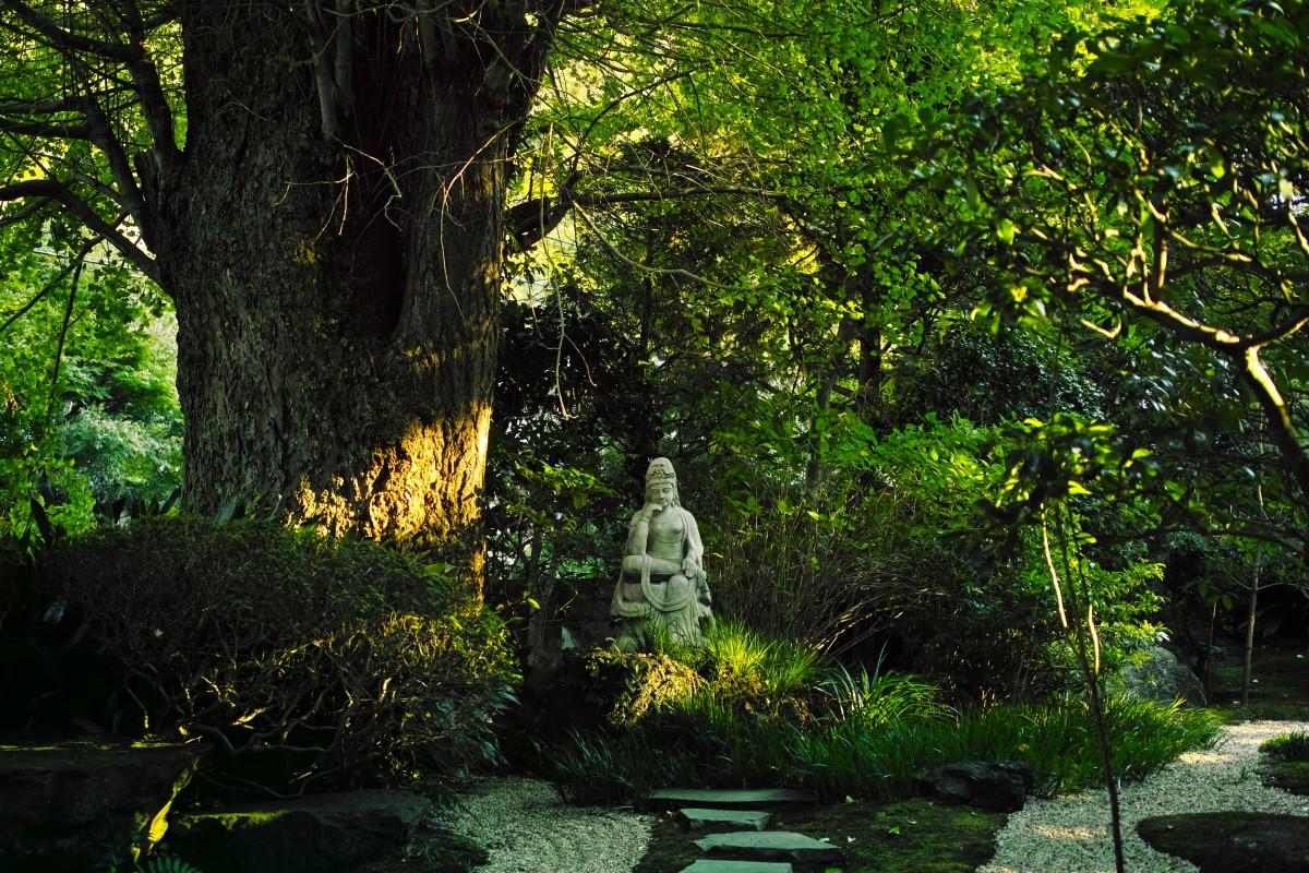 Mối tương hợp giữa đạo Phật và sinh thái học