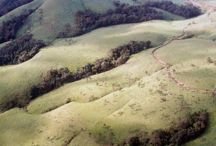 Cây số 15 đèo Mang Yang – trận đánh bị lãng quên