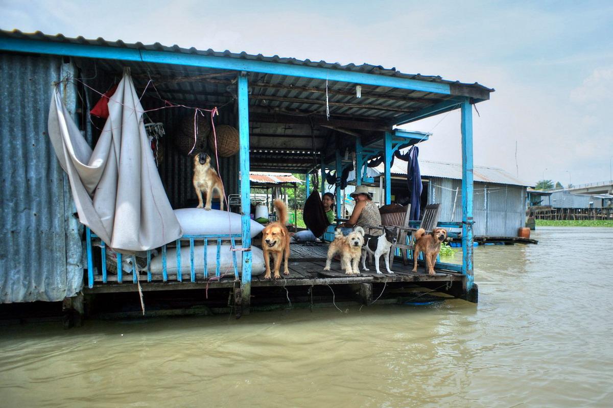 Chùm ảnh: Cuộc sống bập bềnh cùng sóng nước ở làng nổi Châu Đốc