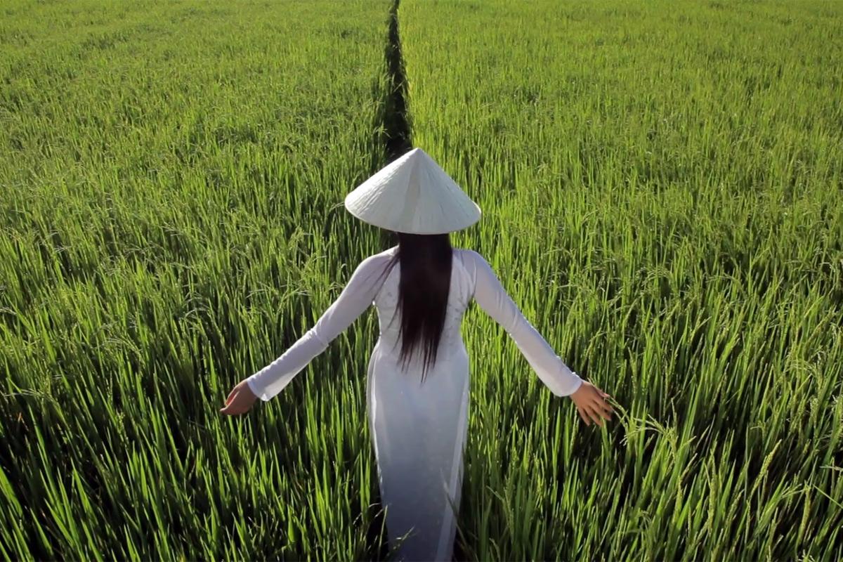 Bài hát Việt Nam quê hương tôi – tượng đài hòa bình của đất nước