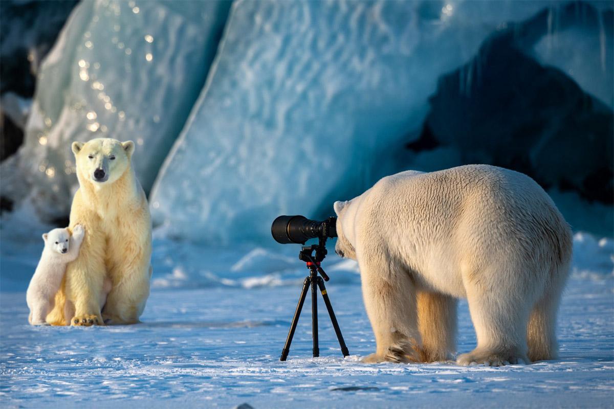 Nhận diện tham vọng chủ quyền của Trung Quốc ở Bắc Cực