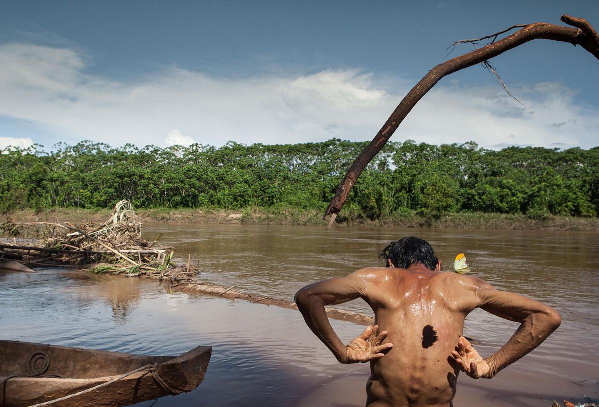 Nhung mon an doc dao cua bo lac trong rung gia Amazon hinh anh 1