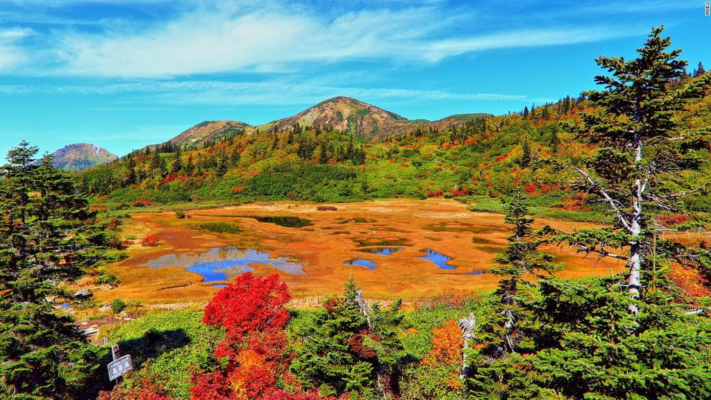 Hồ Koya (Niigata): Mùa thu trên núi Hiuchi đem lại cho hồ Koya những sắc màu rực rỡ. Hồ nước nông và phủ đầy cây này thay chiếc áo màu vàng, đỏ và xanh như khu rừng bao quanh. Đây là điểm dừng chân thú vị trên đường lên đỉnh Hiuchi.