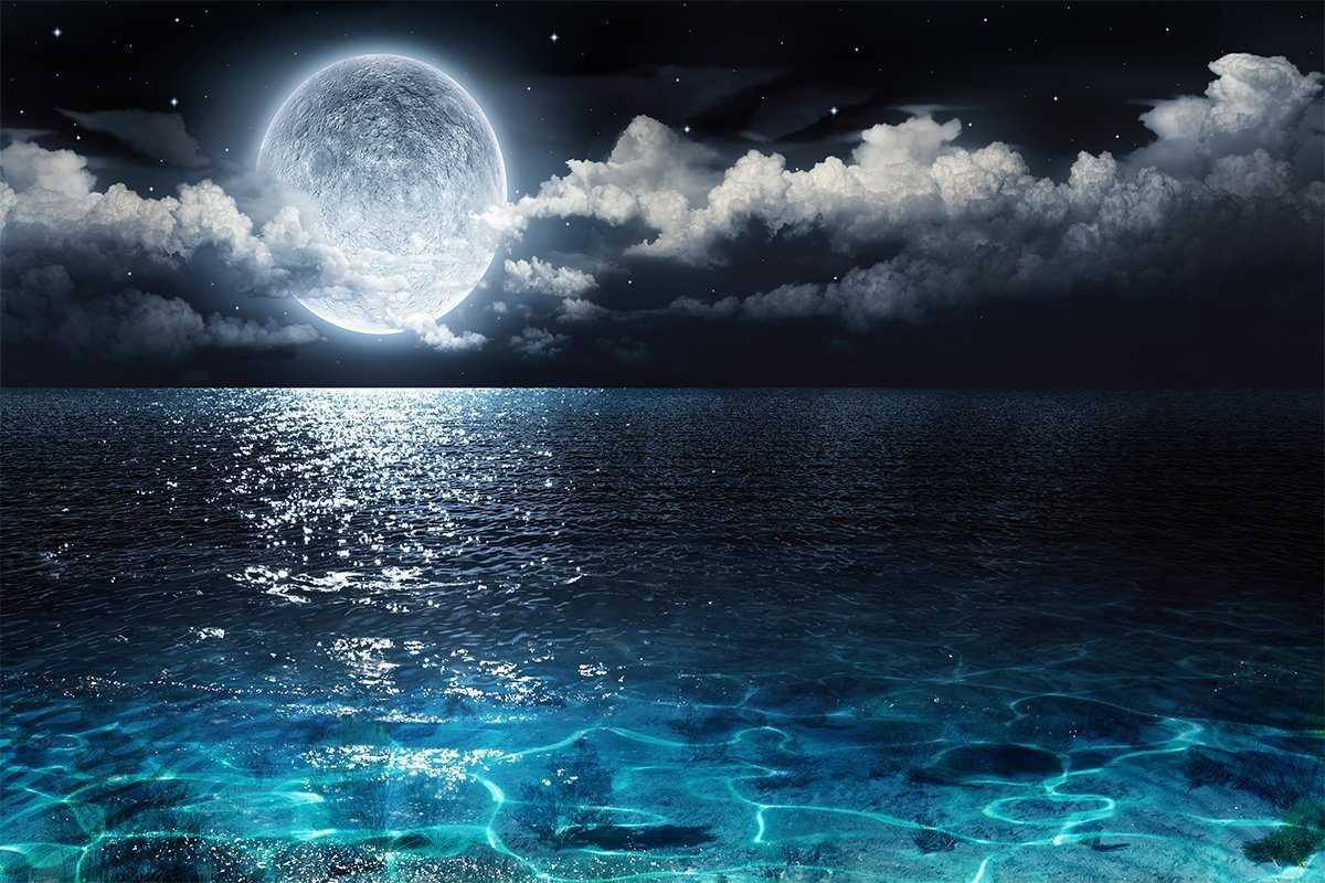 Tương lai nào cho năng lượng thủy triều?