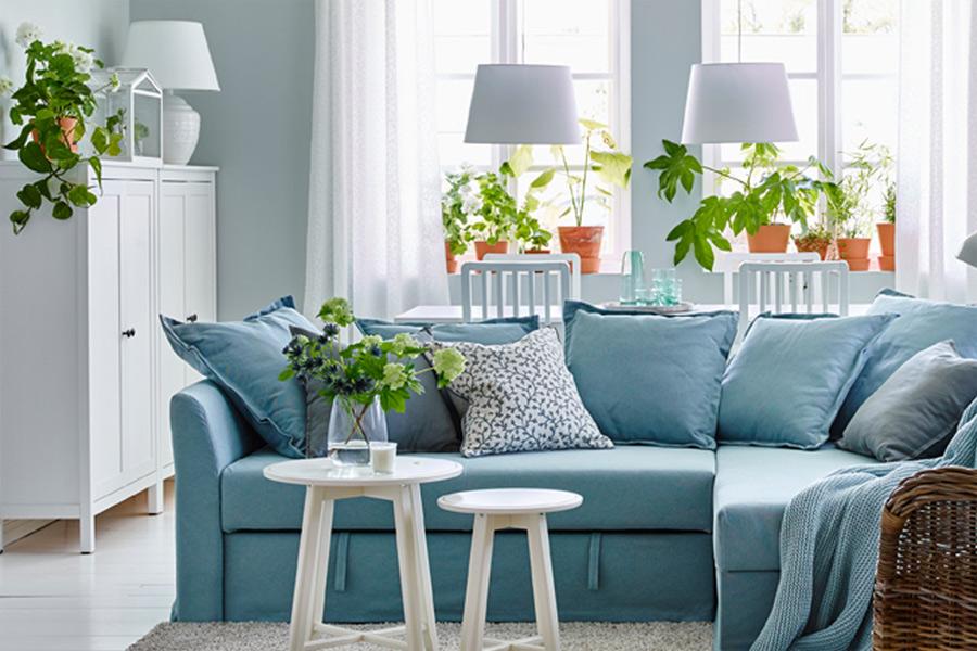 Đem cây xanh vào nhà: Một số gợi ý hữu ích