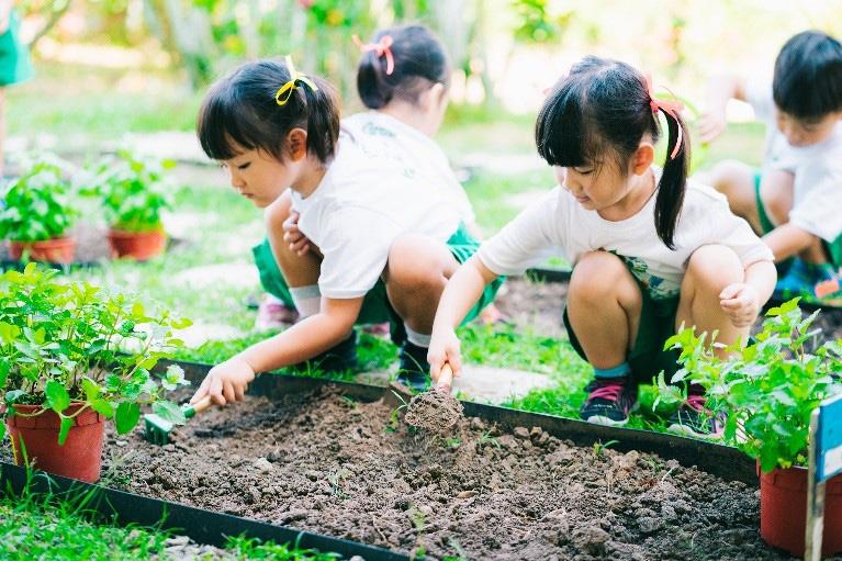 Bảo vệ môi trường phải bắt đầu từ mỗi gia đình
