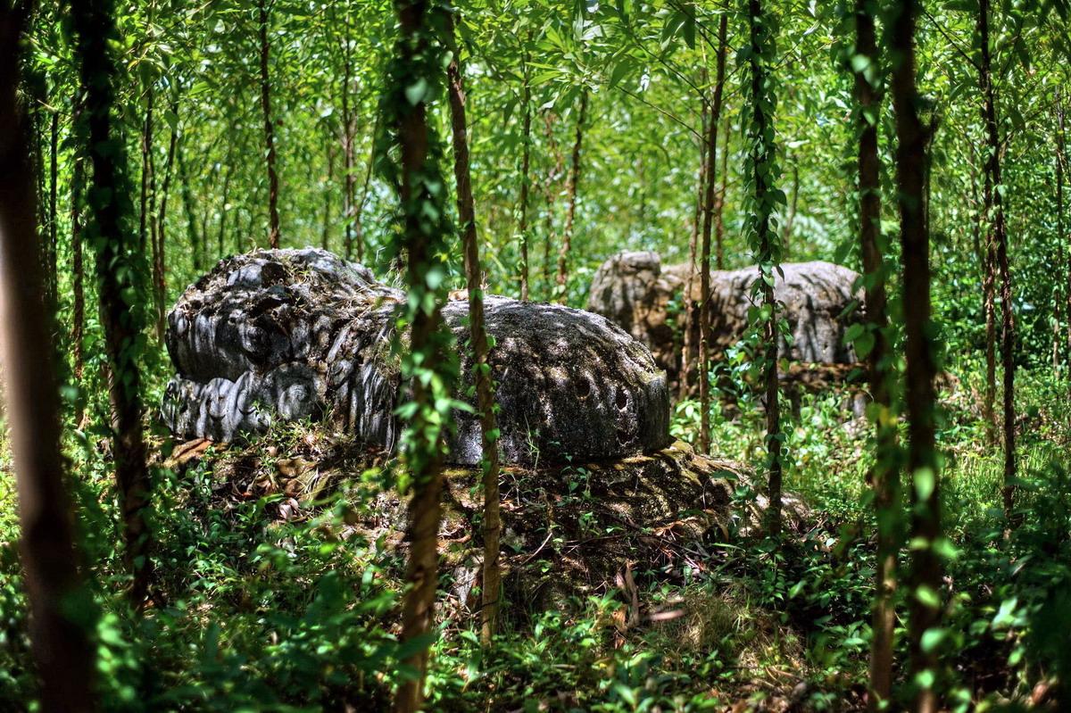 Chùm ảnh: Hàng trăm mộ cổ trên ngọn núi hoang vắng ở Phú Yên
