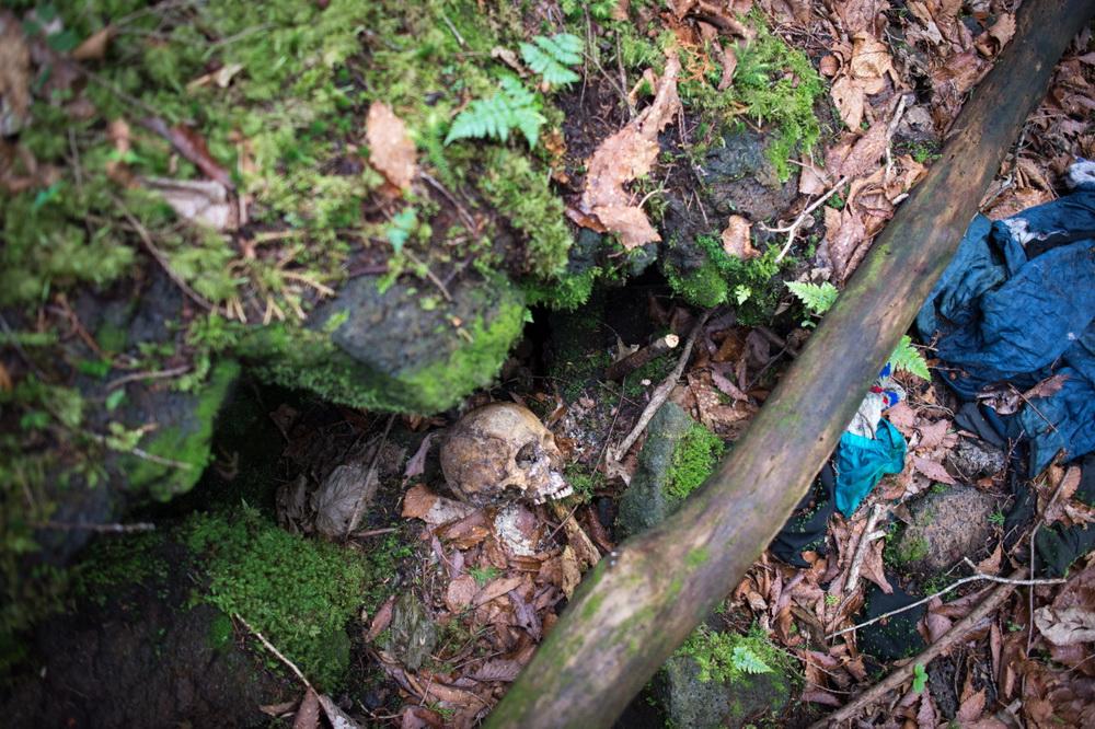 Những hình ảnh khủng khiếp trong khu rừng tự sát Aokigahara của Nhật Bản