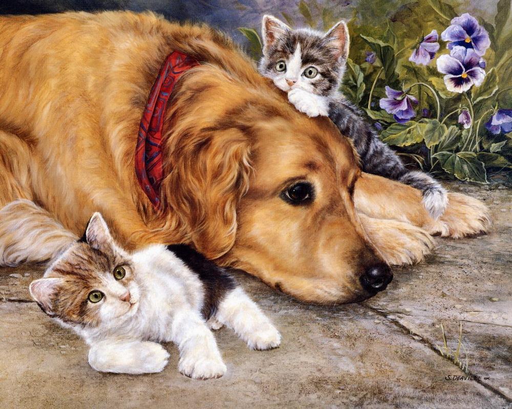 Thiên đường chó mèo qua tranh của Shirley Deaville