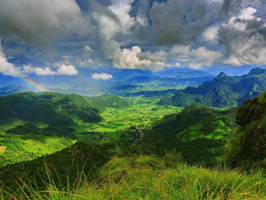 Bao quanh núi Phu Chi Fa ở Chiang Rai là một khu rừng xanh tươi, rậm rạp.