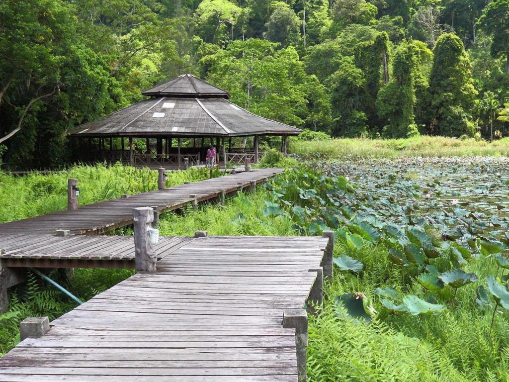 Miền Nam Thái Lan có những khu đồi núi hùng vĩ. Du khách có thể tới thăm Công viên quốc gia vịnh Thale, nằm gần dãy Banthat ở tỉnh Satun.
