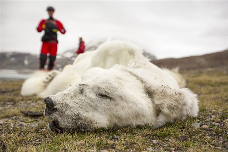 Biến đổi khí hậu và nguy cơ của một cuộc khủng hoảng đa dạng sinh học toàn cầu
