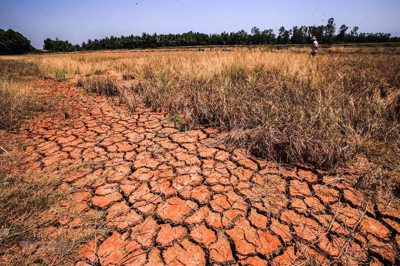 Biến đổi khí hậu ở Việt Nam: Từ quá khứ đến tương lai