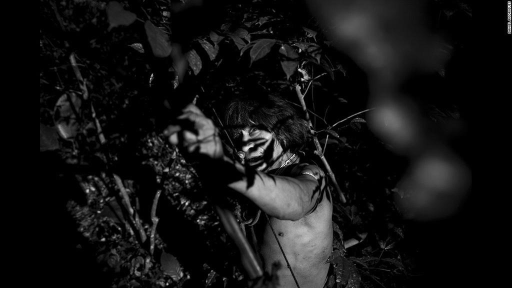 Muturuhum, một thành viên của bộ lạc Awa-Guaja, dùng cung tên để săn bắn trong khu rừng nhiệt đới Amazon. Nhiếp ảnh gia Bồ Đào Nha Daniel Rodrigues đã ghi hình cuộc sống thường ngày của bộ lạc có nguy cơ tuyệt chủng cao nhất trên thế giới.