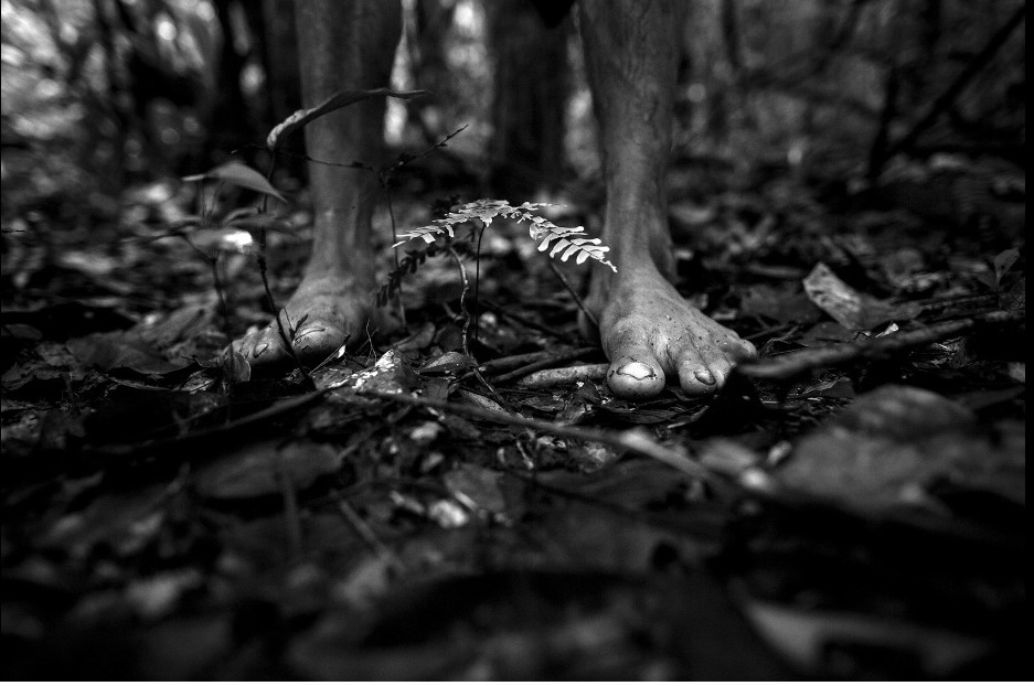 Cuộc sống hoang dại của bộ lạc ít người nhất hành tinh