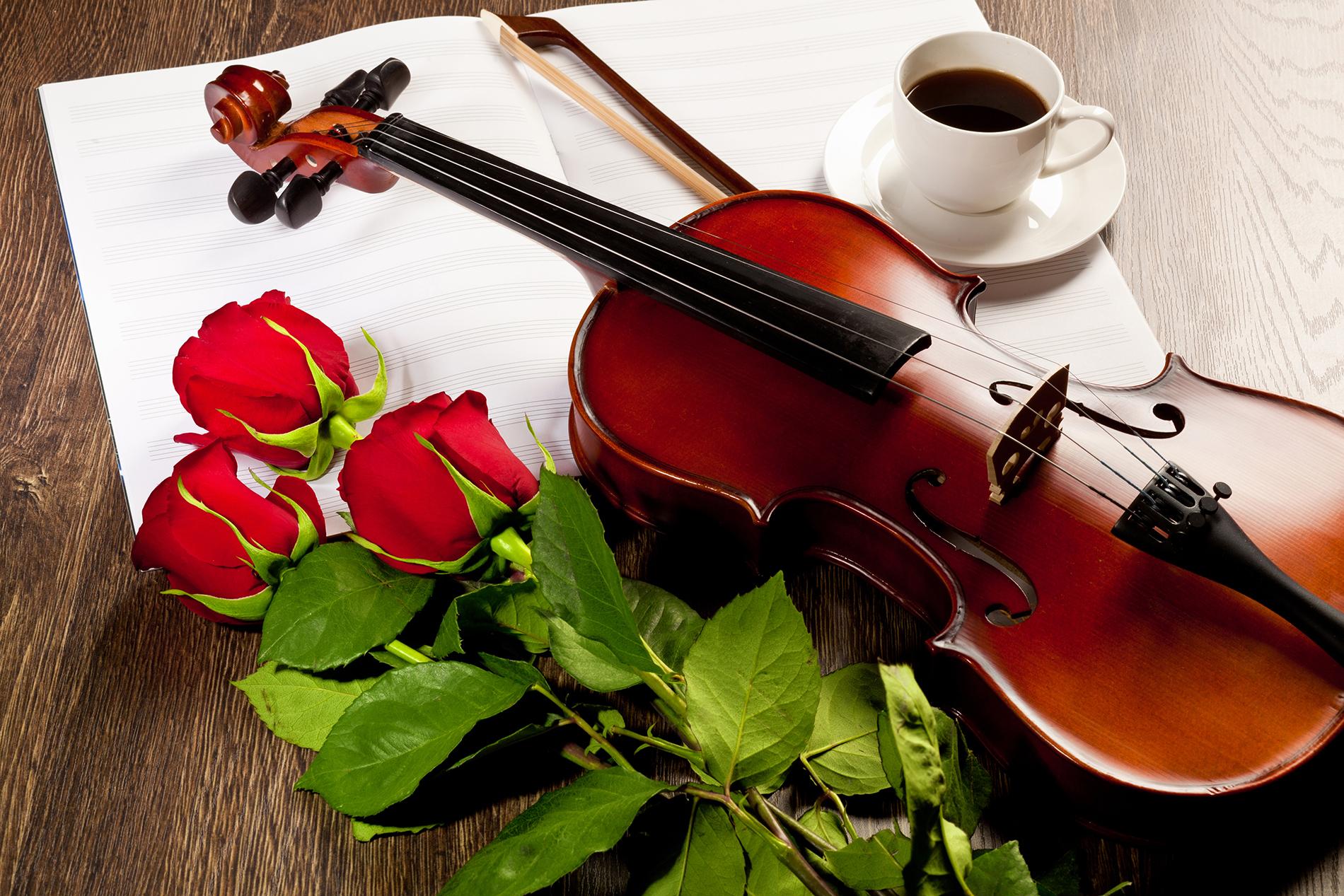 Học nhạc để biết trân trọng những điều khác biệt