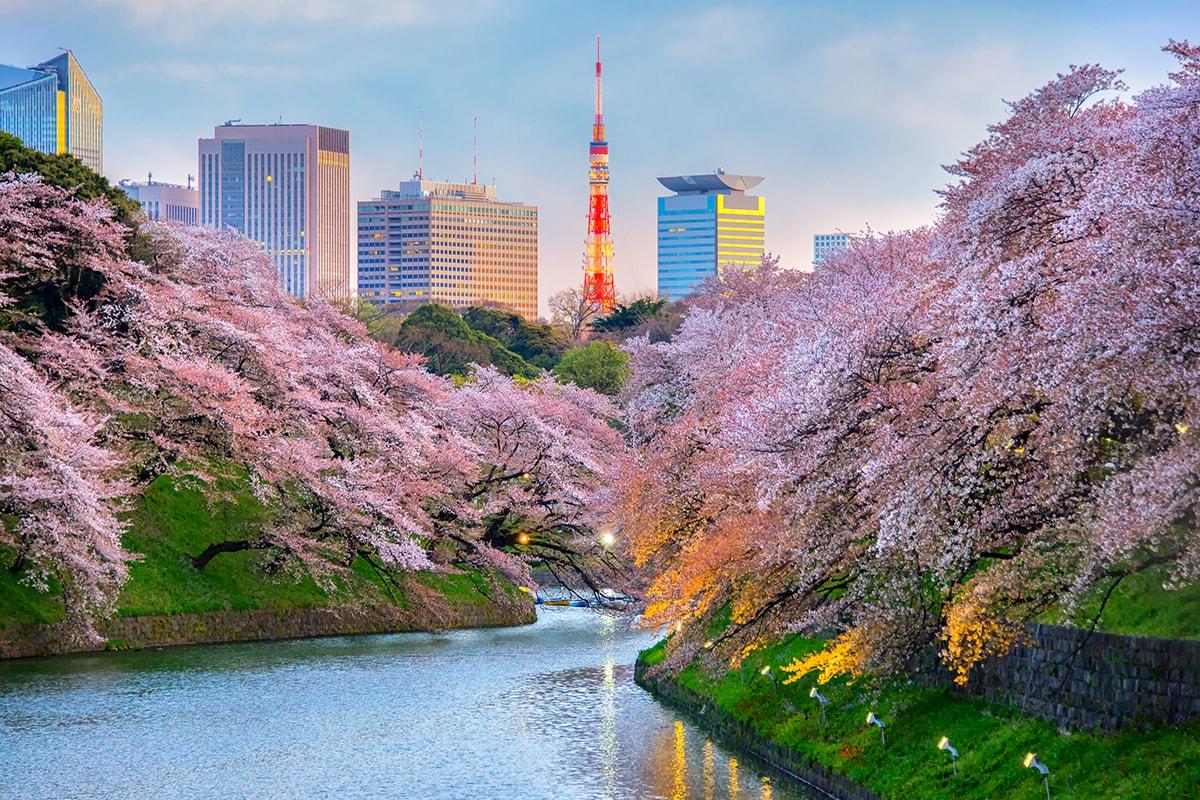 4 điều quan trọng Việt Nam có thể học từ Nhật Bản