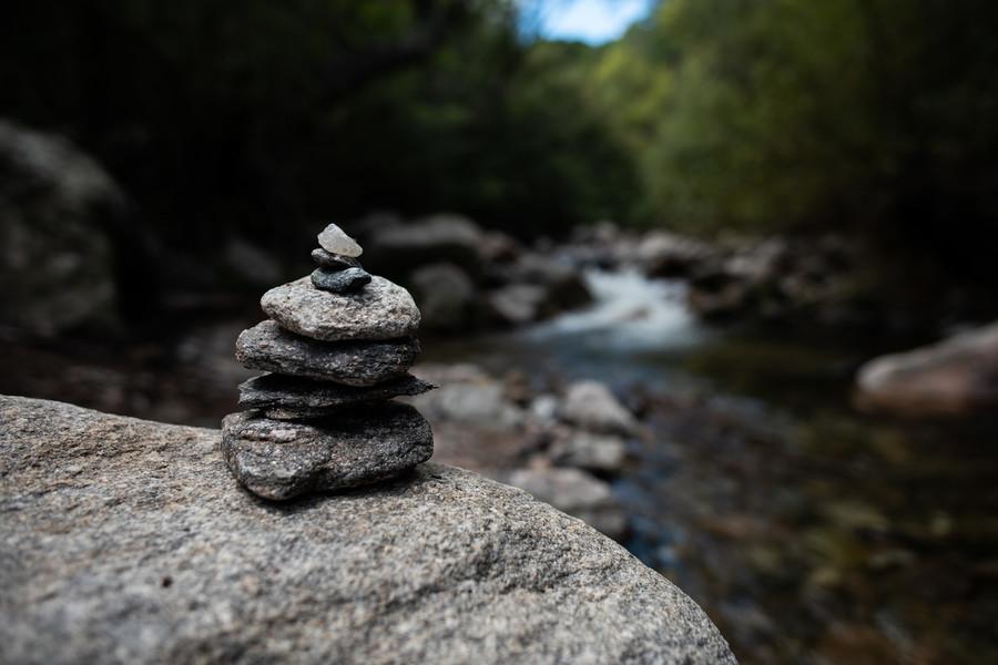 Đạo đức học Phật giáo và vấn đề môi trường