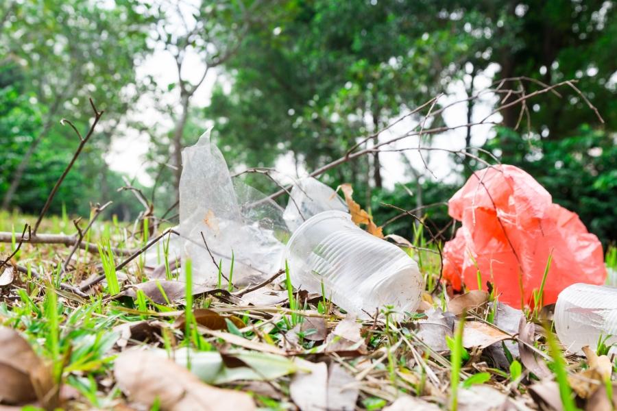 Nhựa phân hủy sinh học có thân thiện như bạn nghĩ?