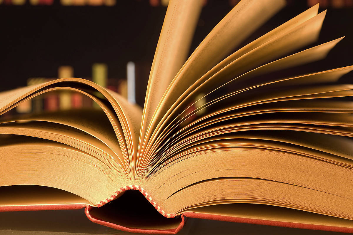 Hành trình đi tìm giá trị thẩm mĩ của văn chương