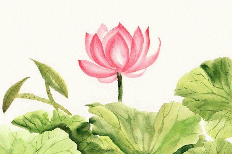 Suy ngẫm về 66 lời giáo huấn từ đạo Phật