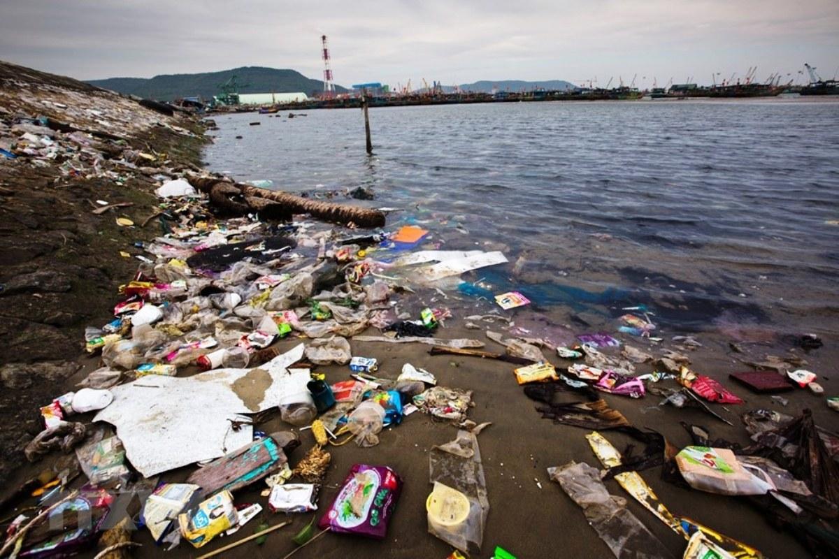 Cứu vãn môi trường biển Việt Nam: Sự lạc quan xa vời