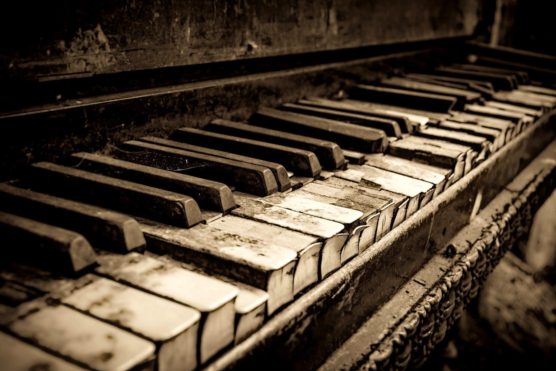 Thiếu vắng âm nhạc, nỗi đau của nền giáo dục Việt
