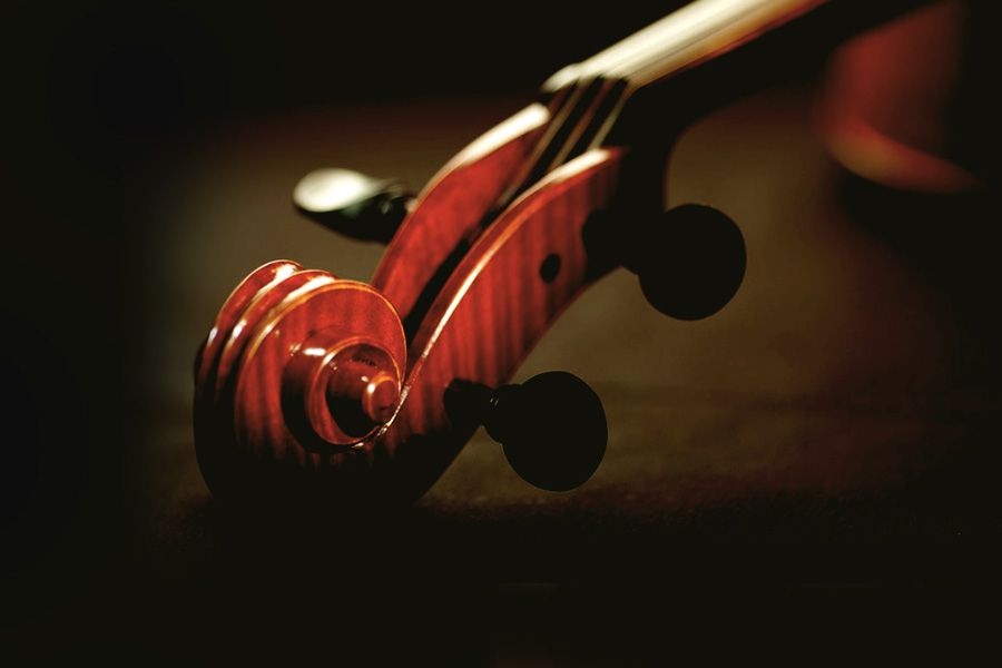 Tổng quan về các nhạc cụ trong dàn nhạc giao hưởng