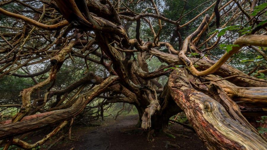 Chùm ảnh: 10 điểm du lịch siêu thực như ở hành tinh khác