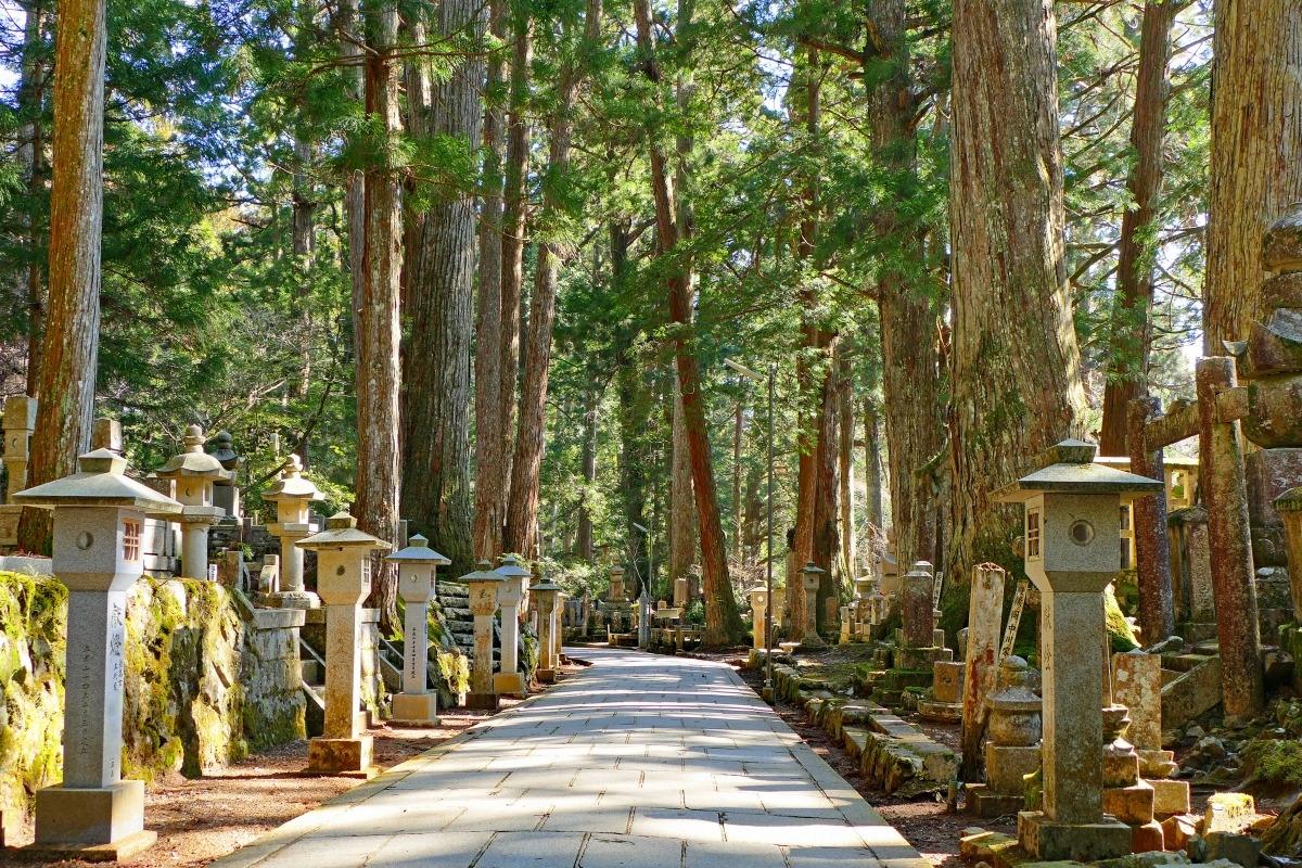 Định hướng Phật giáo cho phát triển kinh tế và sử dụng tài nguyên bền vững