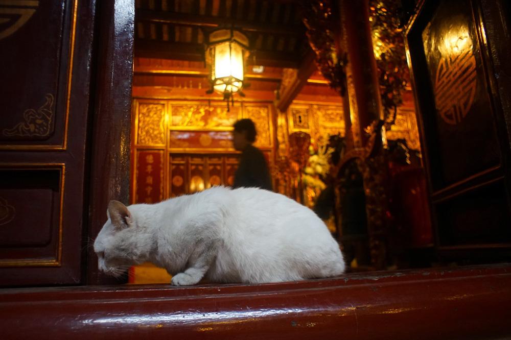 Chùm ảnh: Đền Bạch Mã – ngôi đền cổ nhất Hà Nội