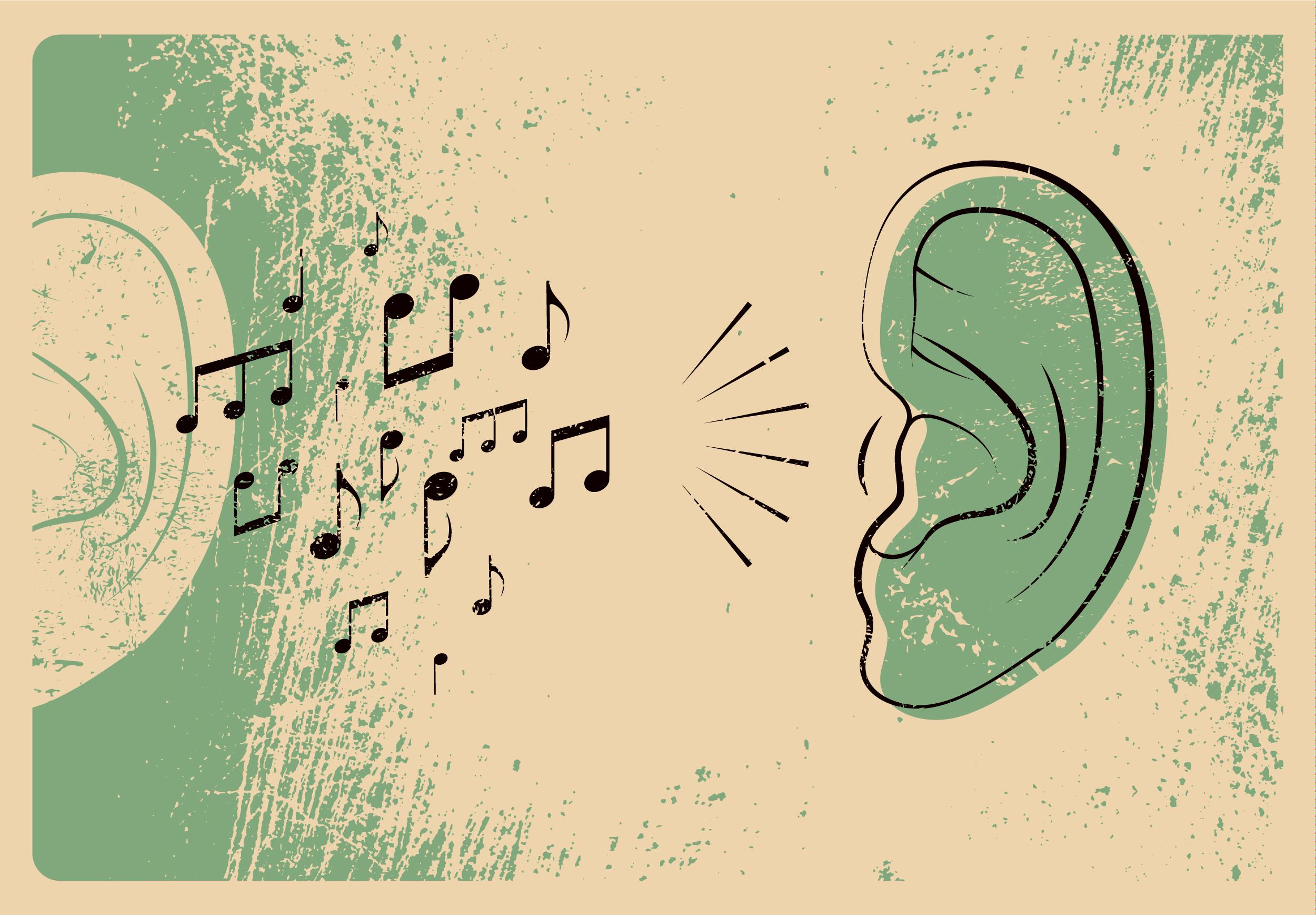 Khả năng nhận thức âm nhạc: Tự nhiên hay nuôi dưỡng?
