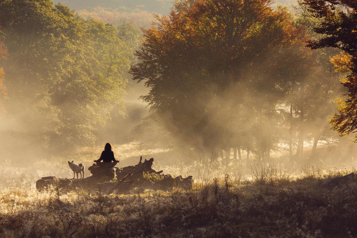 Quan hệ con người – thiên nhiên dưới góc Đạt Lai lạt Ma