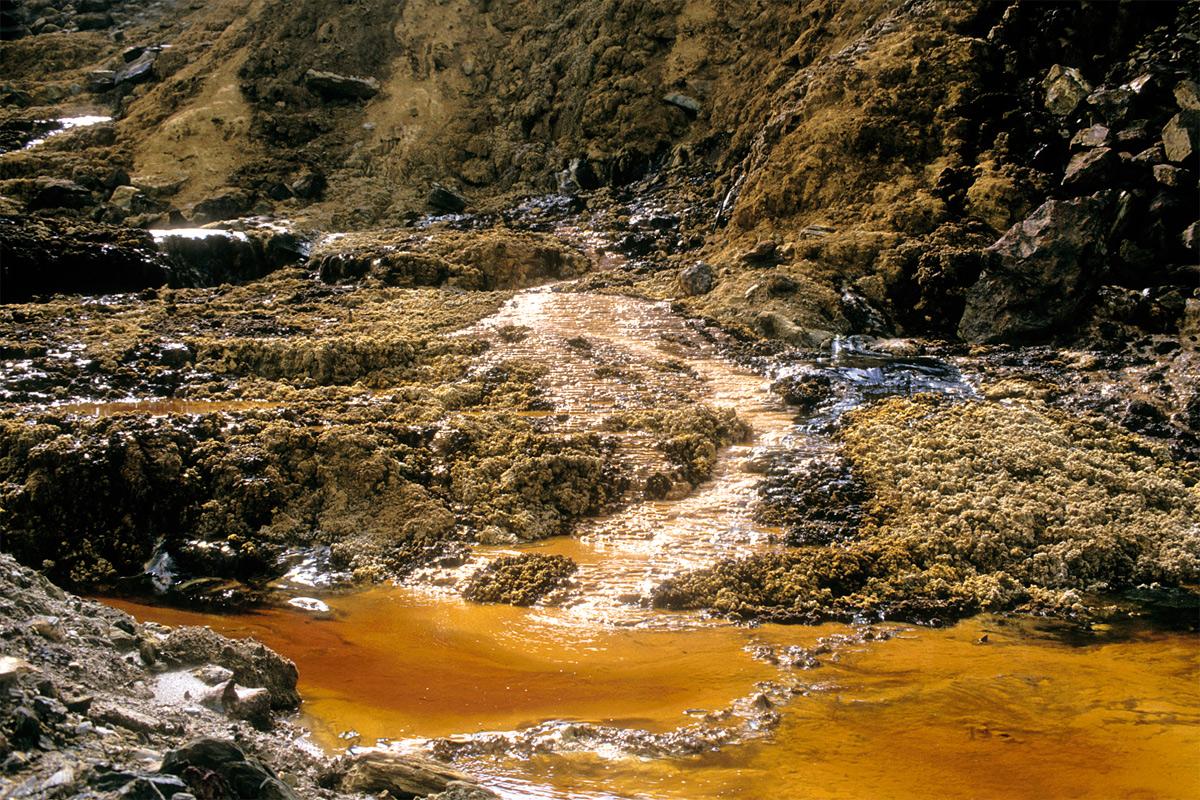 Những điều cần biết về ô nhiễm môi trường đất