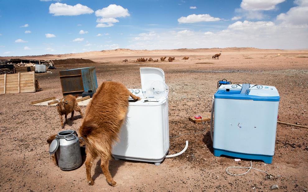 Chùm ảnh: Cuộc sống du mục thời hiện đại ở Mông Cổ