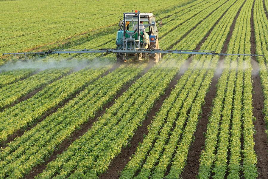Những hệ lụy của thuốc bảo vệ thực vật đến môi trường, con người