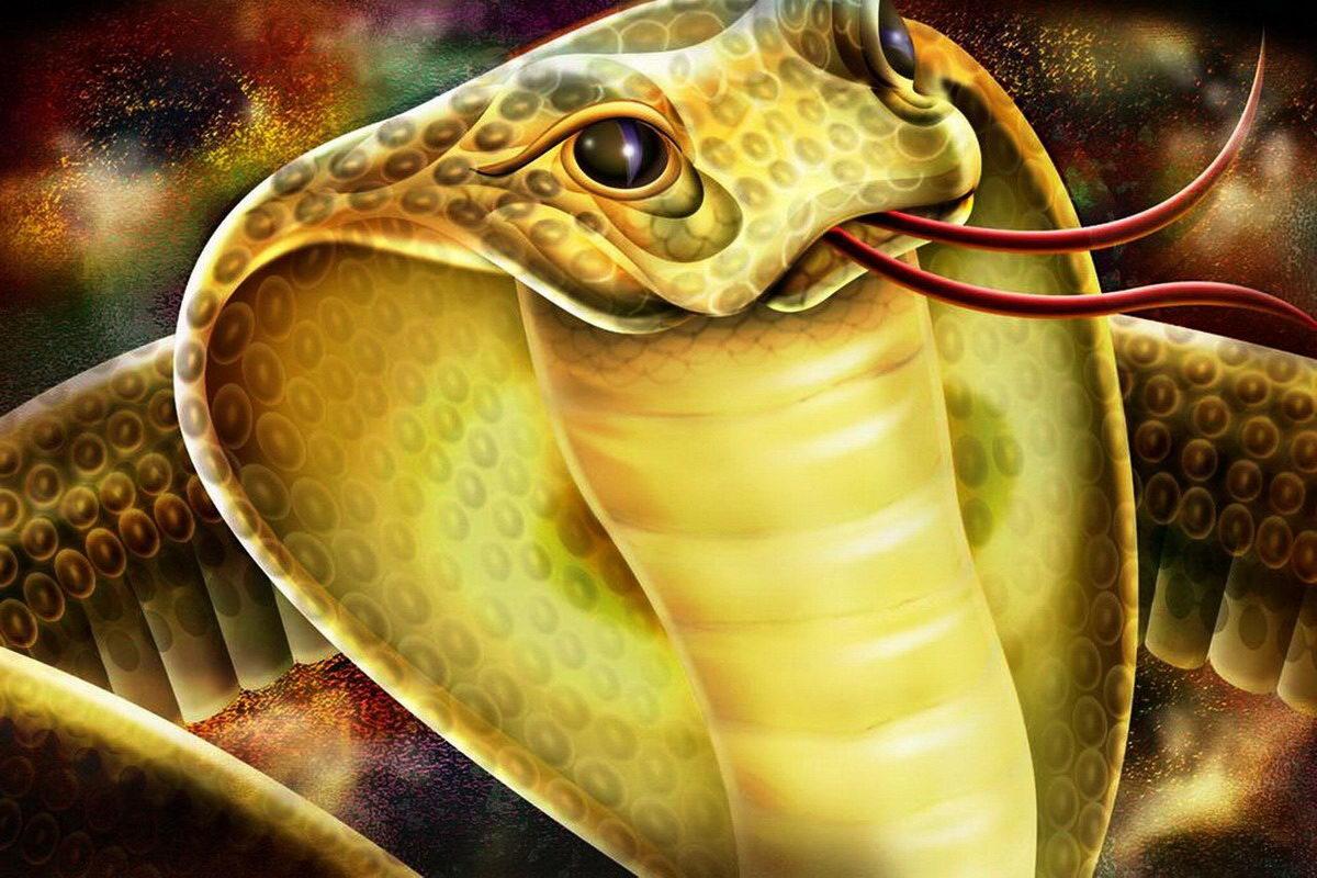 Hình tượng rắn trong huyền thoại và văn học